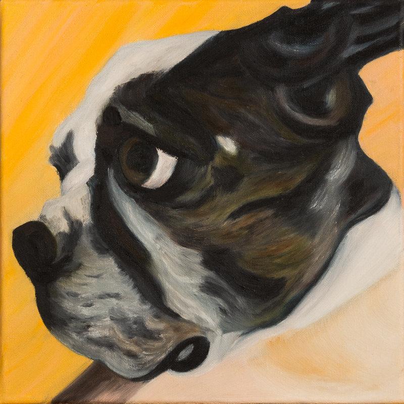 Arnie N°1 2013 Huile sur toile 30 X 30 Animal Figuratif