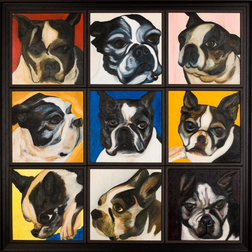 Dog portraits, Andy Warhol style, at different times of the day.