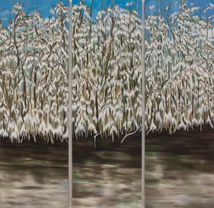 Paysage à la peinture à l'huile, d'une végétation luxuriante, dans la mangrove, au sud de la Floride.